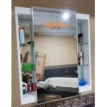 RS7080鋼烤防水櫃+橫移鏡w70*h80cm